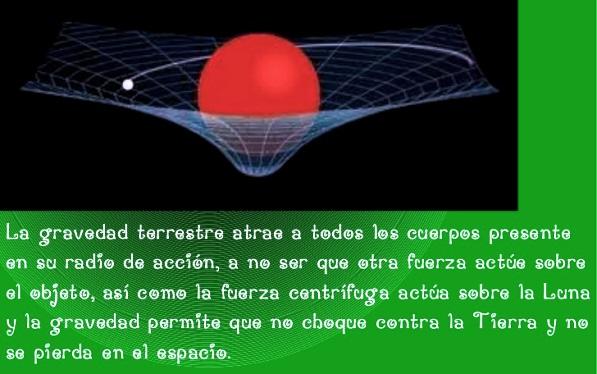 ¿Cuál es la importancia de la gravedad?