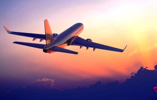 ¿Por qué un avión puede vencer la fuerza de la gravedad?